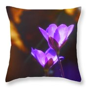 Spring Wild Flower 2 Throw Pillow