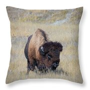 Standing Bull Throw Pillow