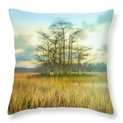 Standing On The Edge Of Evening  Throw Pillow