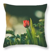 Start Of Spring Throw Pillow by Dheeraj Mutha