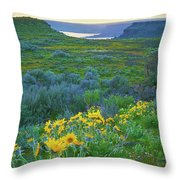 Steamboat Rock 01 Throw Pillow