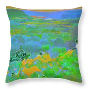 Steamboat Rock 03 Throw Pillow