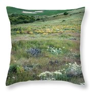 Steptoe Butte View 9276 Throw Pillow