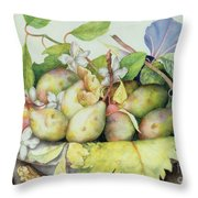 Still Life With Plums, Walnuts And Jasmine Throw Pillow