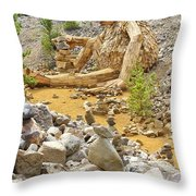 Stone Stacking Throw Pillow