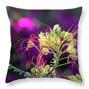 Stream Of Colored Highlights Leads To Yellow Bird Of Paradise Throw Pillow