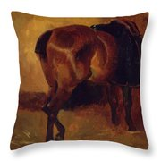 Study For Bay Horse Seen From Behind Throw Pillow