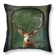 Stuffed And Mounted Throw Pillow