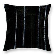 Stunning Fine Art Landscape Image Of Winter Forest Landscape In  Throw Pillow