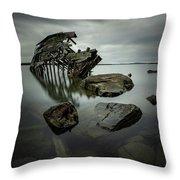 Sturgeon Bay Shipwreck In November Gloom Throw Pillow
