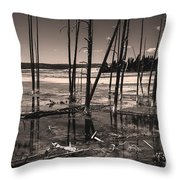 Sulfur Field Throw Pillow