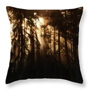 Sultry Morning Radiance Throw Pillow