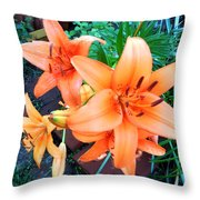 Summer Blast Of Color Throw Pillow