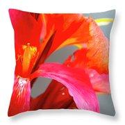 Summer Lilly Pink Throw Pillow
