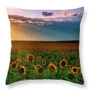 Summer Season Throw Pillow by John De Bord