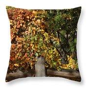 Summers End Throw Pillow by Ann E Robson