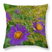 Summers Last Shout Throw Pillow