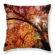 Sun Peaking Through The Autumn Colors  Throw Pillow