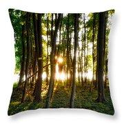 Sun Slivers Throw Pillow