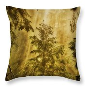 Sunbeams In The Foggy Forest #3 Throw Pillow