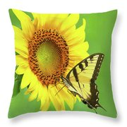 Sunflower And Swallowtail Throw Pillow