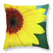 Sunflower- Shine On Me Throw Pillow