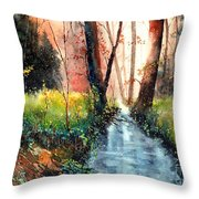 Sunlight Colorful Path Throw Pillow