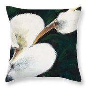 Sunlit Pussy Willow Throw Pillow by Sharon Duguay