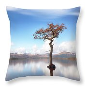Sunny Afternoon On Loch Lomond Throw Pillow