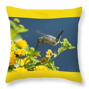 Sunny Delights Throw Pillow