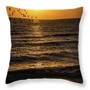 Sunrise Birds Nc Throw Pillow