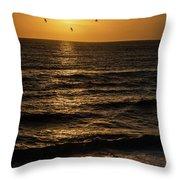 Sunrise Birds North Carolina Throw Pillow