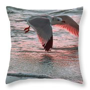 Sunset Glide Throw Pillow