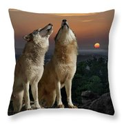 Sunset Harmony Throw Pillow