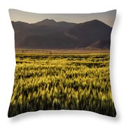 Sunset Over Wheat Throw Pillow
