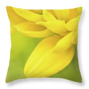 Sunshine Petals Throw Pillow
