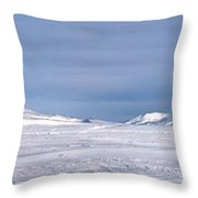 Svalbard Panorama Throw Pillow
