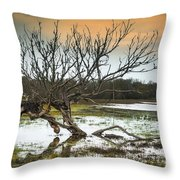 Swamp And Dead Tree Throw Pillow
