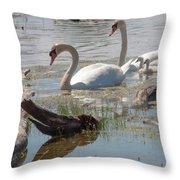 Swan Family Outting  Throw Pillow