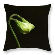 Sweet Pea Buds Throw Pillow