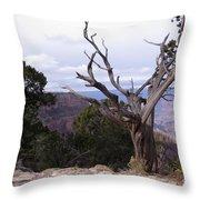Swirly Tree Throw Pillow