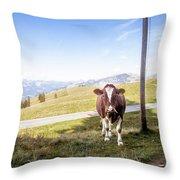 Swiss Cow Throw Pillow