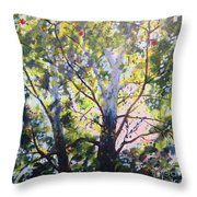 Sycamore Inspiration Throw Pillow