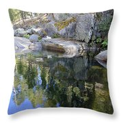 Take In Your Surroundings Throw Pillow by Sean Sarsfield