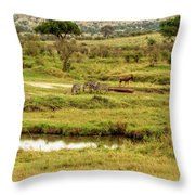 Tanzania Animal Landscape Throw Pillow
