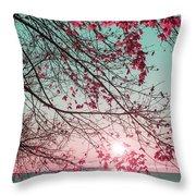Teal And Fuchsia - Autumn Sunrise Reimagined Throw Pillow