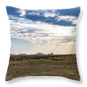 Thaba Nchu Landscape Throw Pillow