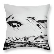 The Arctic Is Crying Throw Pillow