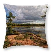The Artistic Cranberry Bog Throw Pillow