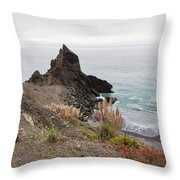 The Beauty Of Big Sur Throw Pillow
